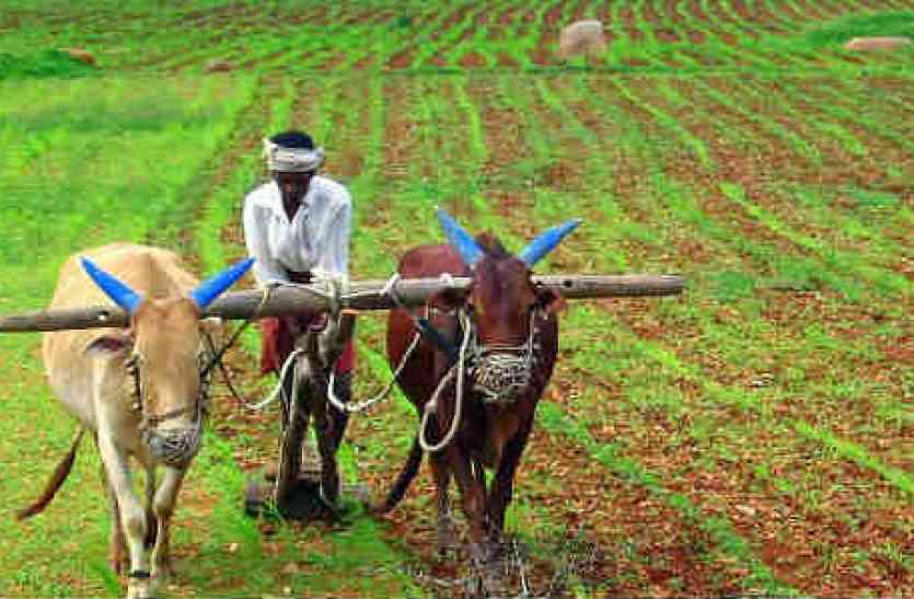 मोदी सरकार किसानों के विकास के लिए लाई तीन बिल, विपक्ष कर रहा विरोध : जेपी नड्डा